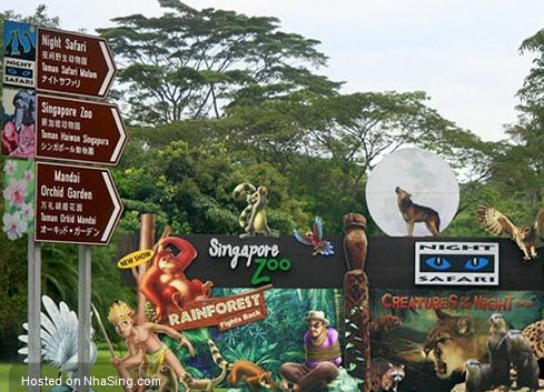 Đặt vé máy bay đi Singapore khám phá Đảo Quốc Sư Tử