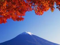 Khám phá Tokyo Núi Phú Sĩ và Meiji Shrine cũng vé máy bay Vivavivu