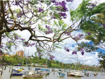 Đến với Queensland một địa điểm đầy thơ mộng của Úc