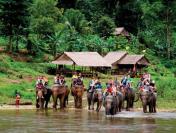 Có vé máy bay Thái Lan khứ hồi để đến thăm quan công viên Voi